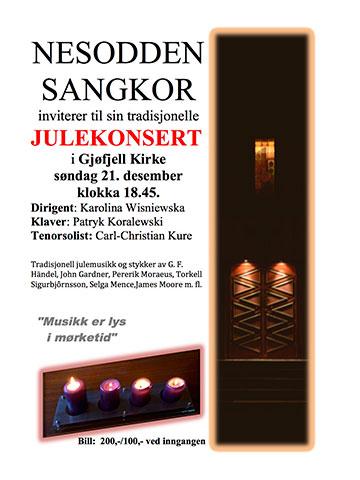 Julekonsert i Gjøfjell kirke 2014. Dirigent: Karolina Wisniewska.
