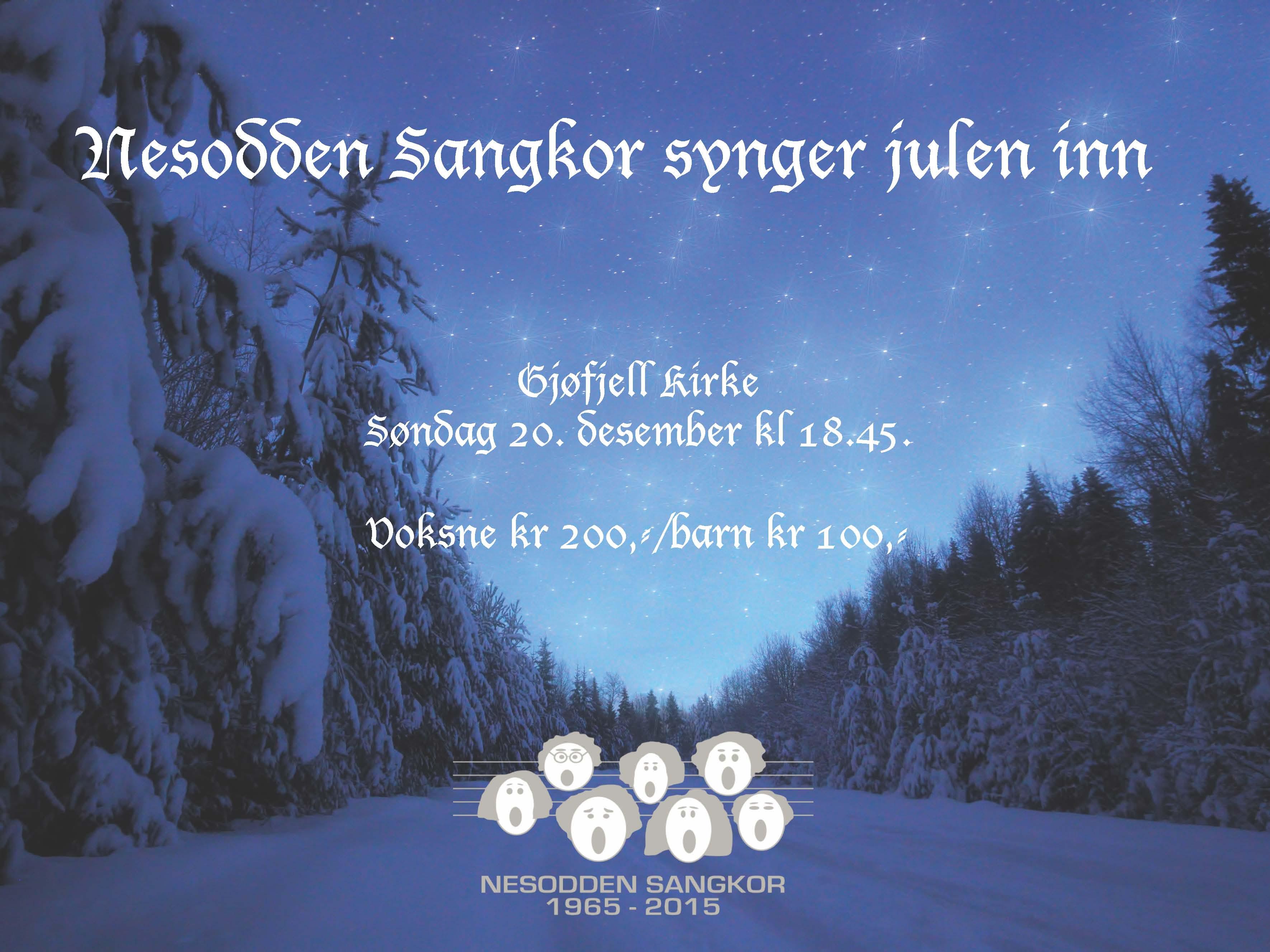 Julekonsert i Gjøfjell kirke 2015. Dirigent: Karolina Wisniewska.